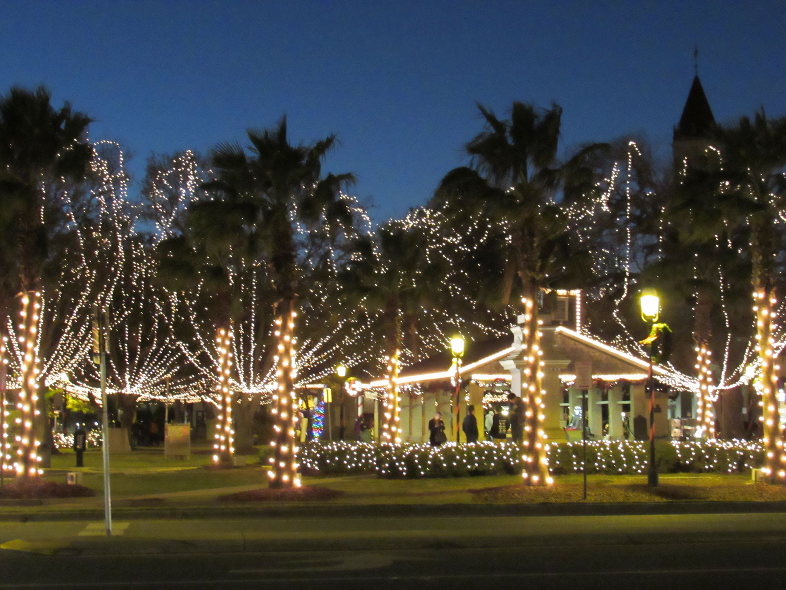 Plaza Market and surrounding trees with white Christmas lights
